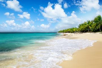 Excursion d'une journée au départ de Punta Cana: île de Catalina et...