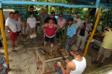 Half-Day Safari Private Tour from Punta Cana