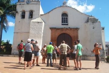 Higuey Half Day Safari Tour from Punta Cana
