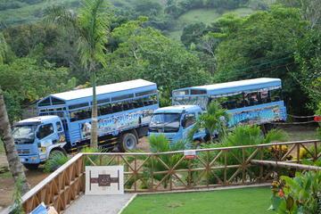Safaritour van een halve dag vanuit Punta Cana