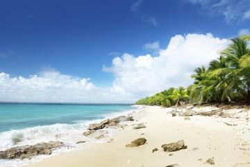 Snorkelen bij Catalina en bezoek aan Altos De Chavon, dagtour vanuit ...
