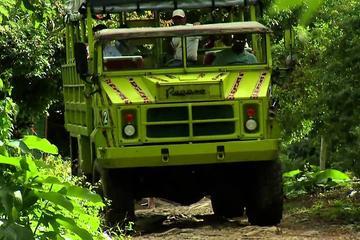 Tour de medio día: Safari desde Punta Cana