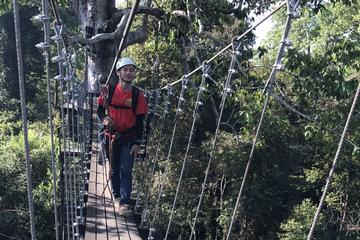 Half Course Zip Line and Half Day Beng MealeaTour