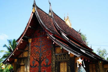 One day city tour and Pak Ou caves including lunch