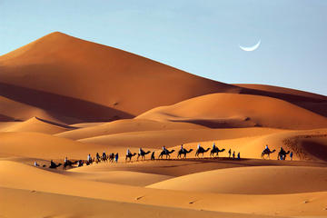 Private Tour: 2-Night Luxury Desert Tour from Fez to Marrakech