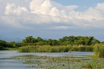 Crucero turístico por el río Negro y las cataratas YS desde Montego...