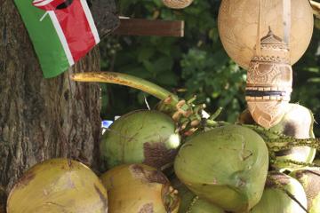Plantación de Croydon con almuerzo jamaicano