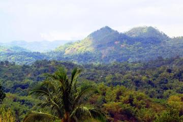 Visite panoramique de Kingston