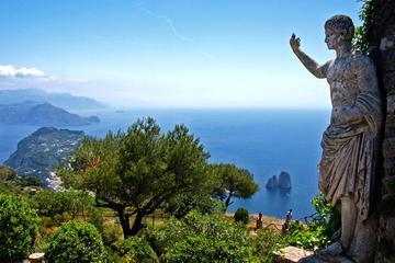 Excursão terrestre: viagem diurna particular para Pompeia e Capri...