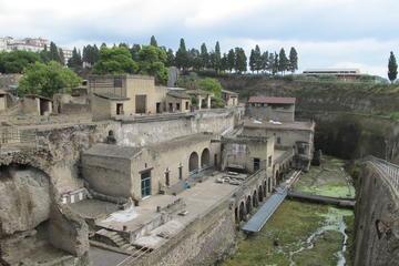 Herculaneum & Vesuvius shore excursion