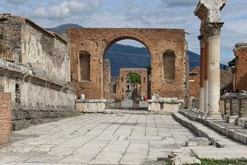 Pompeii and Museum of Naples Private Tour led by an Archaeologist