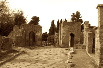 Pompeii Tour Led by an Archaeologist