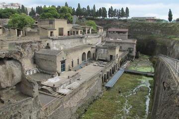Skip-the-Line Herculaneum Ruins Ticket