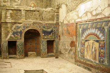Transfer from Naples to Amalfi-Ravello with 2 hours Private Tour in Herculaneum