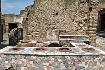 Visita a pie privada a Herculano