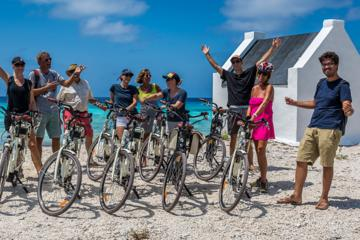 Bonaire South Island Electric Bike...