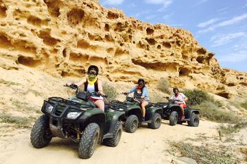 Tour en vehículos todoterreno en Baja California