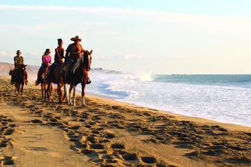 Tour Equitación en el Pacífico en Cabo San Lucas