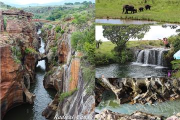 5-Day Kruger National Park Tour from...