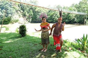 Temburong Experience Full-Day Tour from Bandar Seri Begawan