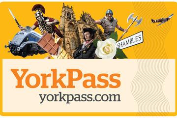 York Pass que incluye excursión en...