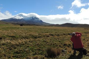 Antisana Volcano and Condors Watching Private Tour