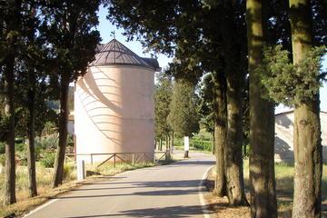 風車小屋の観光とオリーブ オイルのテースティン…