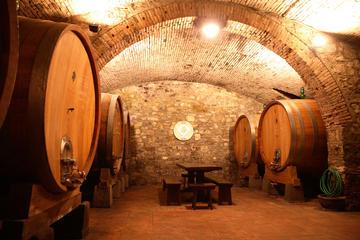 Visite d'un vignoble avec dégustation de vins
