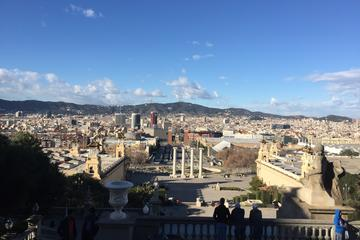 Barcelona Private Guided Tour by Minibus