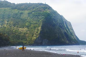 ビッグ アイランド日帰り旅行:オアフ発ハワイ島周遊