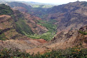 Experiencia en el cañón Waimea de Kauai