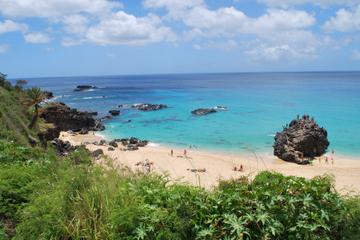 Stor rundtur på øen Oahu - heldagstur...