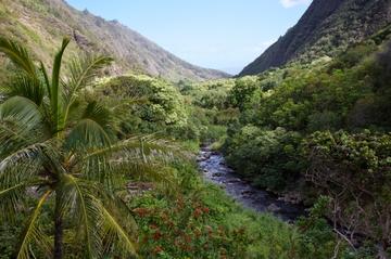 Viagem de um dia para Maui...