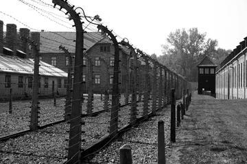 Auschwitz and Birkenau Tour from Krakow with Pickup