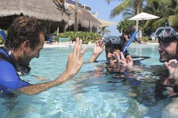PADI Open Water Diver-Kurs an der...