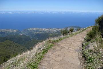 Madeira Peaks - Levada Walk