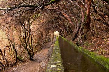 Rabaçal - Levada Walk