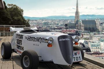 Recorrido a la luz del día en deportivo por Viena