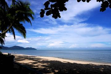 Private Half-Day Discovery Tour in Penang Island