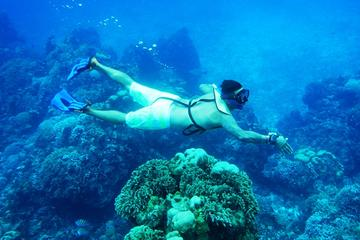 Cozumel Snorkeling Tour from Cancun and Riviera Maya