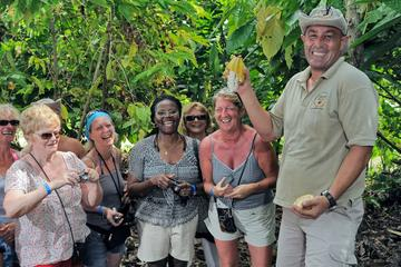 Dominican Discovery Cultural Safari Tour