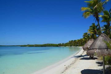 Excursión a islas paradisíacas: Isla Contoy e Isla Mujeres