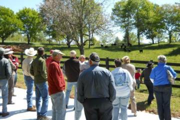Day Trip Walnut Hollow Cattle Ranch Farm Tour near Hayesville, North Carolina
