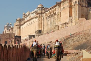 Jaipur City Tour Including Lunch and Monument Entry Fee