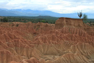 Full-Day Tour to the Tatacoa Desert from Bogota