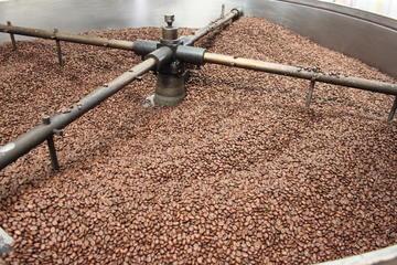 Recorrido del café en Hacienda Coloma...