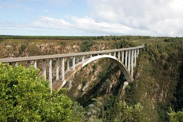 4-Day Garden Route: Port Elizabeth to...