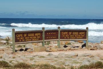 Cape Town Shore Excursion: Cape...