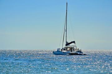 Namibia Dolphin and Seal Catamaran Cruise
