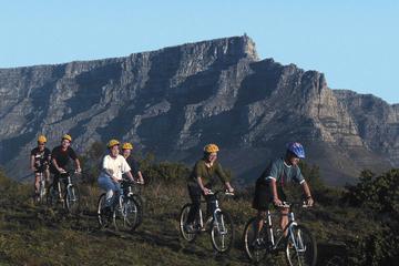 Excursión en bicicleta por Table Mountain desde Ciudad del Cabo